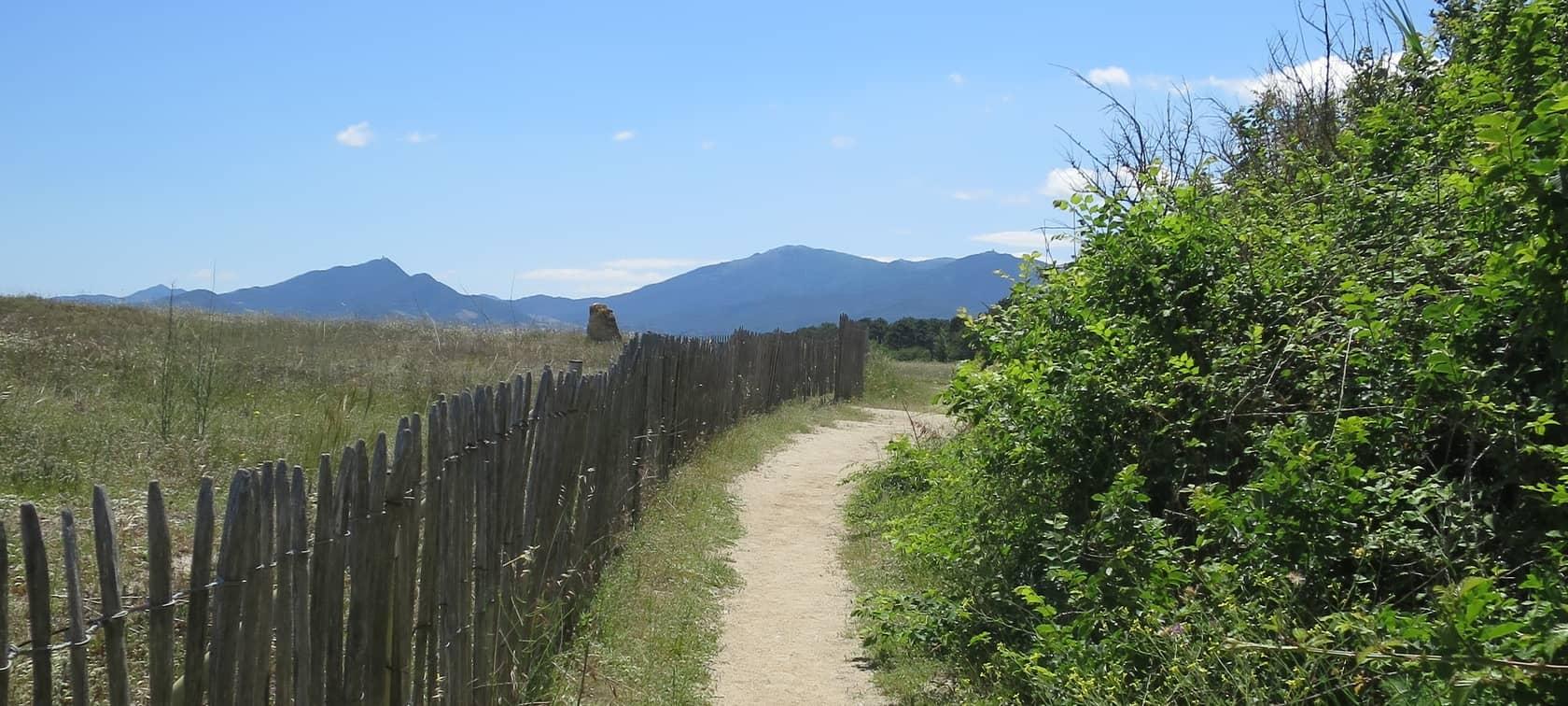 Sentier, Argelès-sur-Mer, réserve du Mas Larrieu, photo d'Aurélie Charles